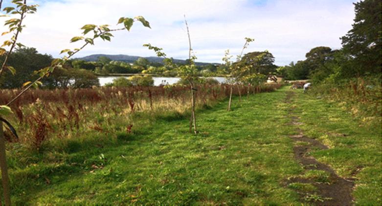 The Glebe and Duddingston Loch